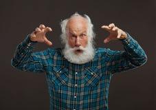 Alter Mann mit einem langen Bart mit großem Lächeln Stockbild