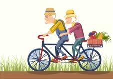 Alter Mann und alte Frau fahren mit dem Fahrrad Vektorpaargärtner Stockfotografie