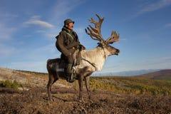 Alter mongolischer Mann, der ein Ren reitet Stockfotografie