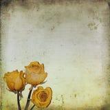 Alter Papierhintergrund mit trockenen Rosen Lizenzfreie Stockfotos