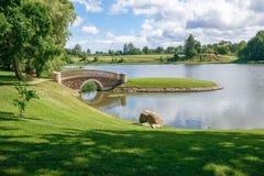 Alter Park mit Brücke und Insel stockbild