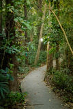 Alter Park um Wat Udong stockbilder