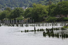 Alter Pier Remnants Lizenzfreie Stockfotos