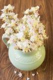alter Pitcher mit Blumen der Kastanie Stockfoto