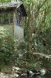 Alter Pumphouse auf Mulgum-Nebenfluss, Nimbin lizenzfreie stockfotografie