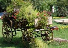 Alter Radwarenkorb mit Blumen Stockfotografie