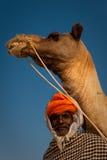 Alter rajasthani Mann mit Kamel Stockfoto
