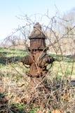 Alter rostiger überwucherter Hydrant, auf einem Gebiet in im Hinterland New York lizenzfreies stockbild