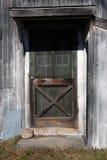Alter rostiger Eingangstür mit Fliegengitter-Eingang zu schmutziger Neu-England Scheune im hellen mittleren Falllicht Stockbilder