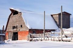 Alter roter Stall im Winter Stockfotografie