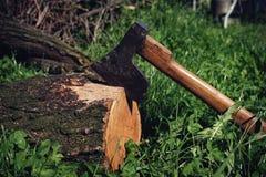 Alter Rusty Ax in einem geschnittenen Baum lizenzfreie stockbilder