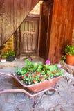 Alter Schubkarrepflanzer vor einer alten Holztür lizenzfreie stockfotografie