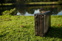 Alter schwarzer Koffer durch den Fluss Stockbild