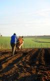 Alter spanischer Landwirt, der das Feld pflügt Stockbild