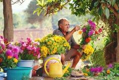 Alter spanischer Landwirt, der Landblumenvorkehrungen trifft Stockfotos