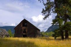 Alter Stall auf dem goldenen Gebiet Stockfoto