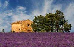 Alter Stall in Provence lizenzfreies stockbild