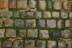 Alter Steinboden mit Form und Gras Lizenzfreie Stockfotografie