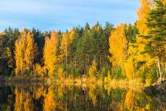Alter Steinbruch des schönen Waldsees an einem klaren Herbsttag stockfoto