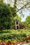 Alter Steinturm im Dschungel Lizenzfreies Stockfoto