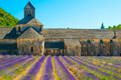 Alter Tempel Abtei von Senanque mit Lavendel blüht, Provence, Frankreich Stockbild