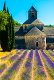 Alter Tempel Abtei von Senanque mit Lavendel blüht, Provence, Frankreich Stockfotografie