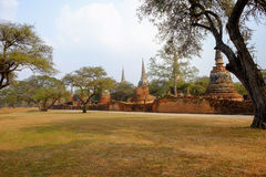 Alter Tempel des Parks in Ayutthaya, Thailand Stockbild