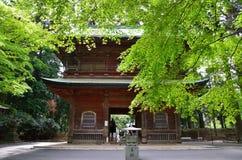 Alter Tempel und grüne Blätter, Japan Lizenzfreie Stockfotografie