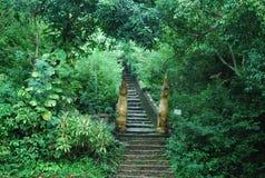 Alter Treppenkasten Stockfoto