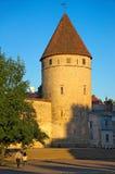 Alter Turm Stockbilder