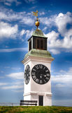 Alter Turm Petrovaradin mit Uhr in Serbien stockbilder