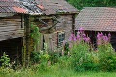 Alter verlassener Stall Stockbild
