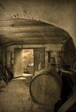 Alter verlassener Weinkeller Stockbild