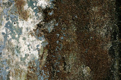 Alter Wandkunsthintergrund, Beschaffenheit Stockbilder