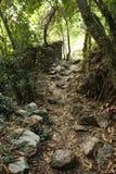 Alter Weg einer Wassermühle Lizenzfreie Stockfotografie