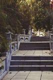 Alter Weg zum Tempel Lizenzfreies Stockbild