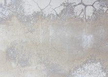 Alter Zementwand-Schmutzhintergrund Stockbilder