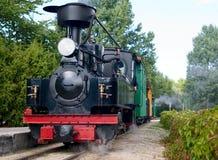 Alter Zug befördert mit der Eisenbahn Stockbild