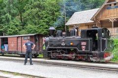 Alter Zug Viseu de Sus lizenzfreies stockfoto