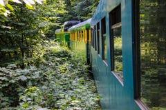 Alter Zug-Zug von Oravita zu Anina Lizenzfreie Stockfotografie