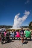 Alter zuverlässiger Geysir in Yellowstone Stockfoto