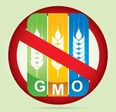 Altera Genetically plantas Fotografia de Stock