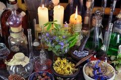 Alternatief geneeskundestilleven met flessen, bessen en herbsAlternative geneeskundestilleven met flessen, bessen en kruiden royalty-vrije stock foto