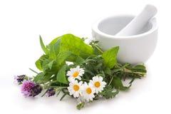 Alternatieve geneeskunde Royalty-vrije Stock Fotografie