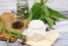 Alternatieve geneeskunde, die voor het filtreren van Smeerwortelzalf voorbereidingen treffen stock fotografie