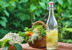 Alternatieve Geneeskunde, elderflower stock afbeeldingen
