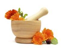 Alternatieve geneeskunde en kruidenbehandeling Royalty-vrije Stock Foto