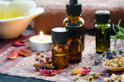 Alternatieve therapie met kruiden en etherische oliën Stock Afbeelding
