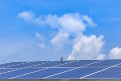 Alternativ energi för solpanel Royaltyfri Bild