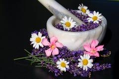 Alternativ medicin med lavendel arkivbild